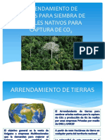 PRESENTACIÓN ARRENDAMIENTO DE TIERRAS