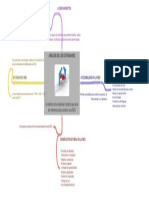Analisis de Estandares Imagen Mapa Conceptual