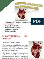 Medico Exposicion