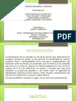 Practica Ubala Diapositivas