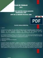 Plan de Trabajo de La Regpol Lima Ene-feb 2018 02