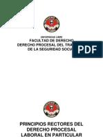 2.1 Diapositiva Los Principios Informadores Del Derecho Procesal en Particular