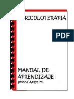 326029529 Auriculoterapia Curso Express (1)