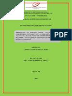 FORMATO-DEL-INFORME-PRELIMINAR.docx