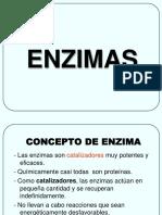 enz-19
