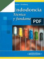 Endodoncia Tecnica y fundamentos - Soares Goldberg