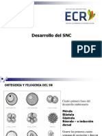 2. Embriologia y Transtornos Del Desarollo SNC 1020 -11 Am