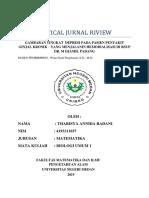 CJR (kesehatan dan resikonya).docx