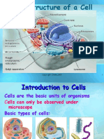 onco cell