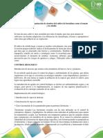 Actividad 5- Examen final-colaborativo Vivi.docx