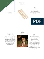 Diccionario de Indigenismos