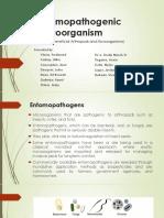 Entomopathogenic Microorganism 1