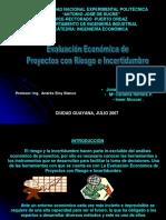 Evaluacion Economica Proyectos Riesgo e Incertidumbre Presentacion Powerpoint