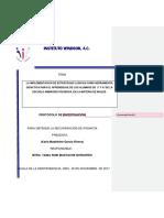 48b8cc_proyecto de Protocolo- Madeleine