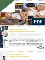 Brochure SAP Business One