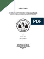 193255-ID-none.pdf