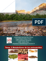 Metabolismo de Los Aminoacidos Mfh III