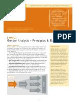 gender-tool-analysis.pdf