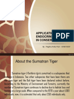 APPLICATION OF ENDOCRINE CONCEPT IN CONSERVATION
