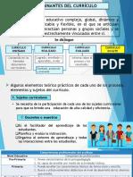 DETERMINANDES DEL CURRÍCULO.pptx