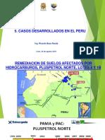 MOD-5-CASOS-BIOREMEDIACION (24-08-19)