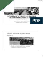 Factores Claves en El Manejo y Desarrollo de Los Arándanos