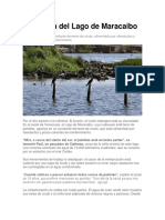 La Agonía Del Lago de Maracaibo