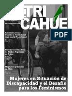 el tricahue 002.pdf