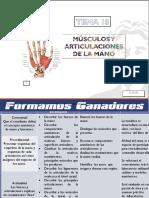 TEMA 18 MÚSCULOS Y ARTICULACIONES DE LA MANO.pptx