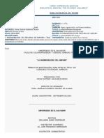 LA INADMISIBILIDAD DEL AMPARO.pdf
