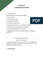 CAPITULO IV Programa de Auditoria