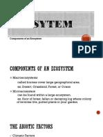 Eco Sytem