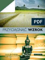 Przyciagnac_wzrok.pdf