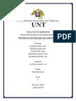 Informe - Estudio de Factibilidad