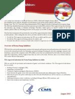 Ppi Adult Factsheet