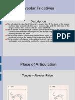 Alveolar Fricative