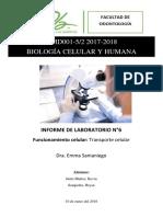 Informe de Laboratorio 6- Transporte de Sustancias