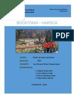 Bocatoma Informe Final