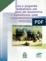 BUBALINOS E ENGORDA