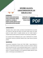 Calicata Grupo n2