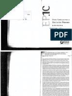 Diseños 2007 y 2018 - Fundamentaciones Practicas Del Lenguaje