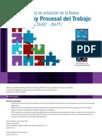 Guia_de_actuacion_de_la_Nueva_Ley_Proces.pdf