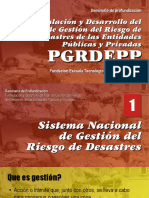 Formulacion PGRDEPP