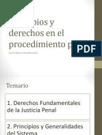 Principios y Derechos en el procedimiento penal