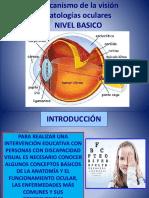 Patologías Oculares - Nivel básico