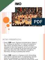SUMO Report Ko
