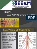 7.- APARATO CIRCULATORIO