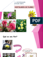 Tema 7. Histología de La Flor