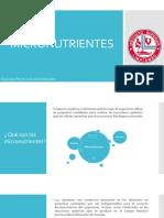Micronutrientes- Espinoza Luis