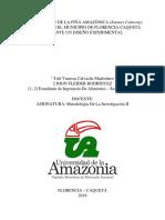 CONSERVACIÓN DE LA PIÑA.docx